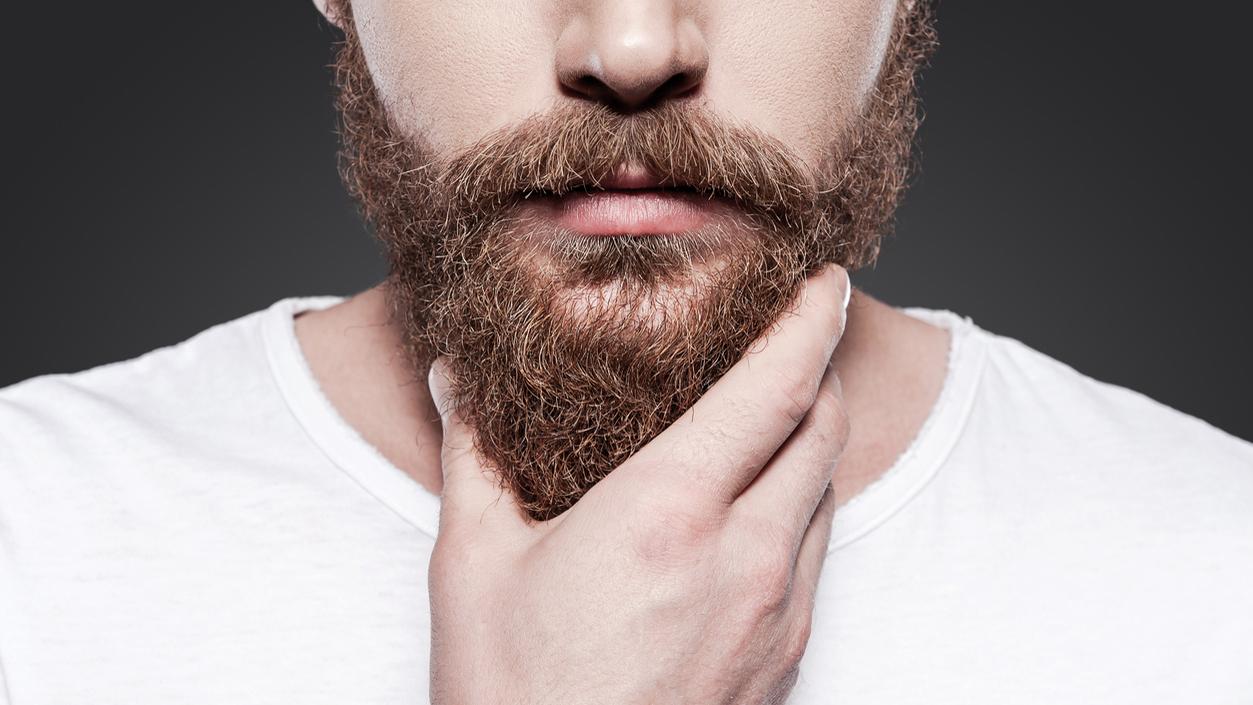 beard styles for men beard man to suit my face shape